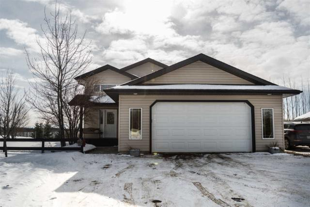 19 53424 Rge Rd 14 Road, Rural Parkland County, AB T7Y 0B5 (#E4098927) :: The Foundry Real Estate Company