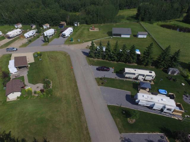 32 Pigeon Lake Escapes, Rural Wetaskiwin County, AB T0C 2V0 (#E4099792) :: The Foundry Real Estate Company