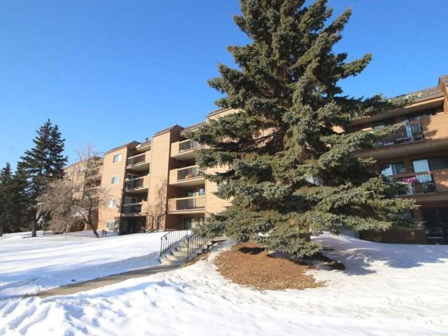 402 9504 182 Street NW, Edmonton, AB T5T 3A7 (#E4100643) :: The Foundry Real Estate Company