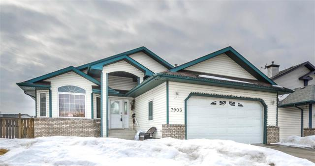 7903 164 Avenue NW, Edmonton, AB T5Z 3J7 (#E4101912) :: The Foundry Real Estate Company