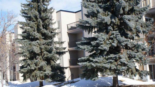 101 9810 178 NW, Edmonton, AB T5T 3H4 (#E4102071) :: The Foundry Real Estate Company