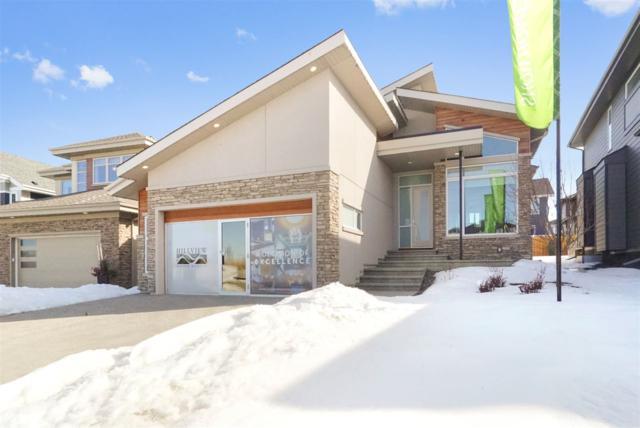 1309 Hainstock Way SW, Edmonton, AB T6W 3B6 (#E4102561) :: The Foundry Real Estate Company