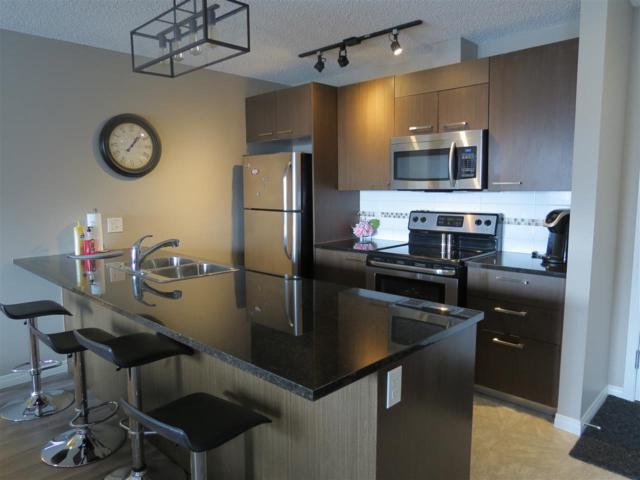 3322 9351 Simpson Drive, Edmonton, AB T6R 0N4 (#E4104548) :: The Foundry Real Estate Company