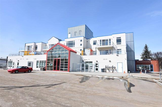 306 9113 111 Avenue, Edmonton, AB T5B 0C3 (#E4104797) :: The Foundry Real Estate Company