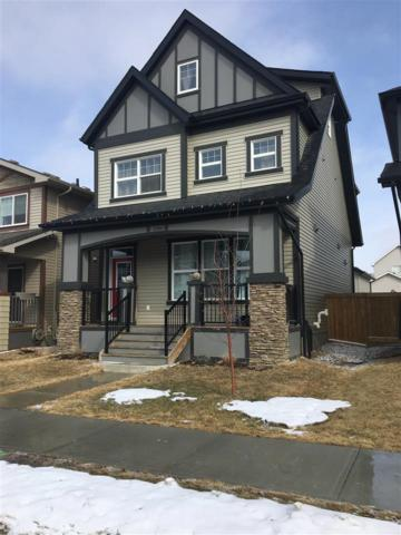 21904 99 Avenue NW, Edmonton, AB T5T 4M5 (#E4105373) :: The Foundry Real Estate Company