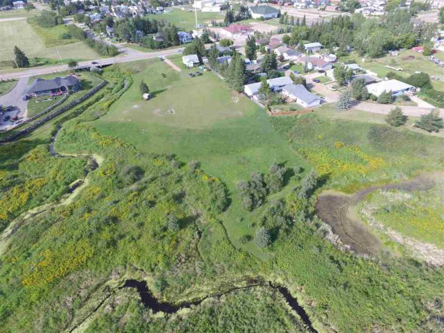 5201 45 Avenue, Millet, AB T0C 1Z0 (#E4106307) :: The Foundry Real Estate Company