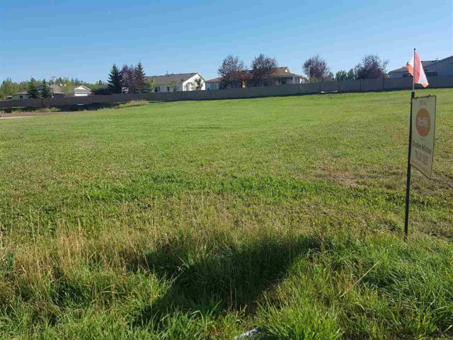 #6 Village Creek Cl, Rural Wetaskiwin County, AB T0C 2V0 (#E4106309) :: The Foundry Real Estate Company