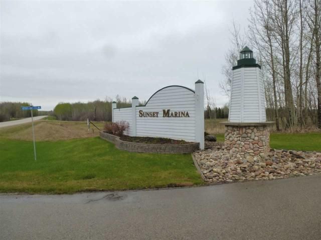 51 Sunset Harbour, Rural Wetaskiwin County, AB T0C 2V0 (#E4110455) :: The Foundry Real Estate Company