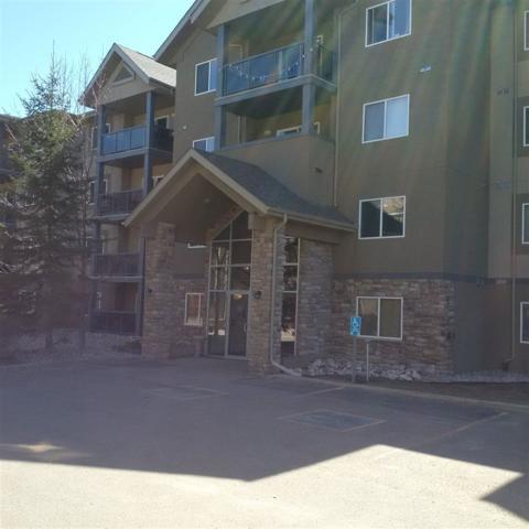 324 279 Suder Greens Drive, Edmonton, AB T5T 6X6 (#E4111241) :: The Foundry Real Estate Company