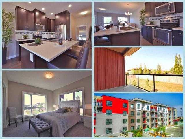 201 12804 140 Avenue, Edmonton, AB T6V 0M3 (#E4111518) :: GETJAKIE Realty Group Inc.