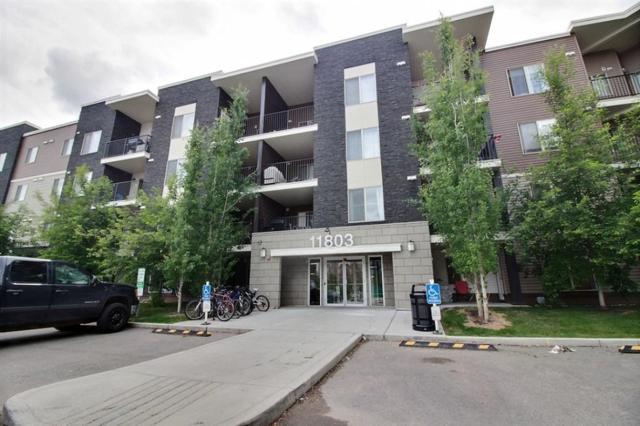 212 11803 22 Avenue, Edmonton, AB T6W 2R9 (#E4113924) :: The Foundry Real Estate Company