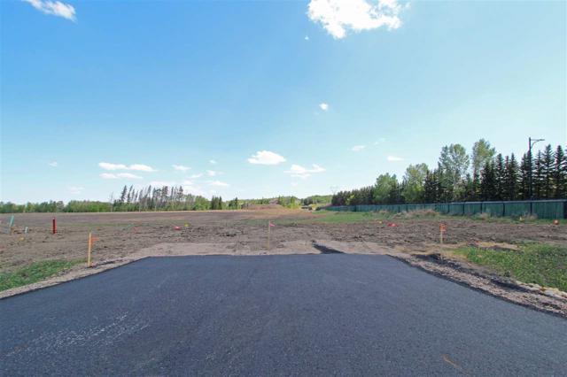 1 - 53217 RR 263, Rural Parkland County, AB T7Y 1E2 (#E4114087) :: Initia Real Estate