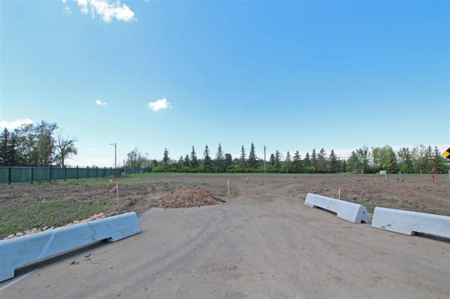 2- 53217 RR 263, Rural Parkland County, AB T7Y 1E2 (#E4114090) :: Initia Real Estate