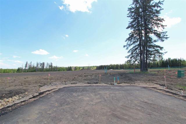7 -53217 RR 263, Rural Parkland County, AB T7Y 1E2 (#E4114106) :: Initia Real Estate