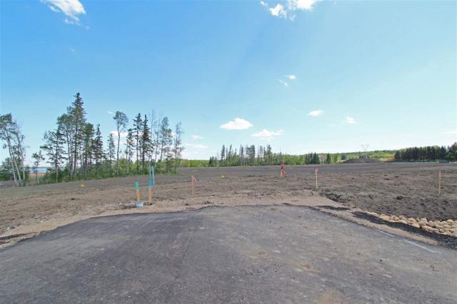 9 - 53217 RR 263, Rural Parkland County, AB T7Y 1E2 (#E4114109) :: Initia Real Estate