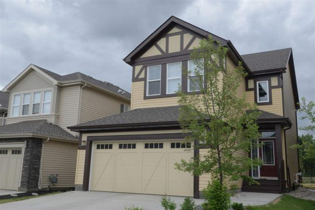 8359 Ellis Cr, Edmonton, Edmonton, AB T6M 0O7 (#E4114541) :: The Foundry Real Estate Company