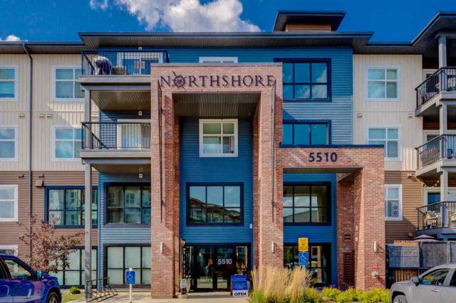 419 5510 Schonsee Drive, Edmonton, AB T5Z 0N9 (#E4115366) :: The Foundry Real Estate Company