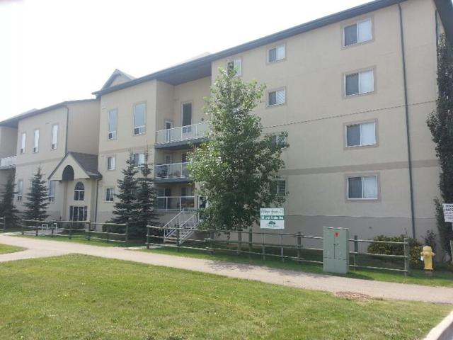 205 260 Lewis Estates Boulevard, Edmonton, AB T5T 3Y4 (#E4116243) :: The Foundry Real Estate Company