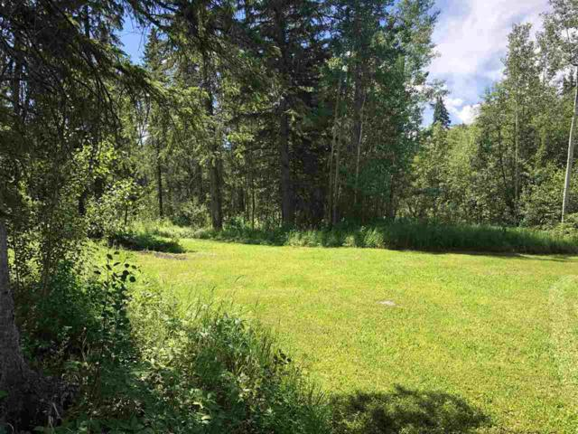 302 Bonnie Drive, Rural Wetaskiwin County, AB T0C 2C0 (#E4117621) :: The Foundry Real Estate Company