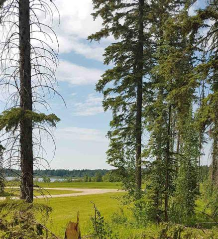 67 Silversprings, Rural Wetaskiwin County, AB T0C 0T0 (#E4117957) :: Initia Real Estate