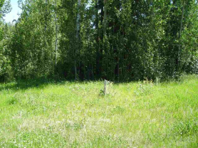 Lot 28 Village Creek Estates, Rural Wetaskiwin County, AB T0C 2V0 (#E4118261) :: The Foundry Real Estate Company