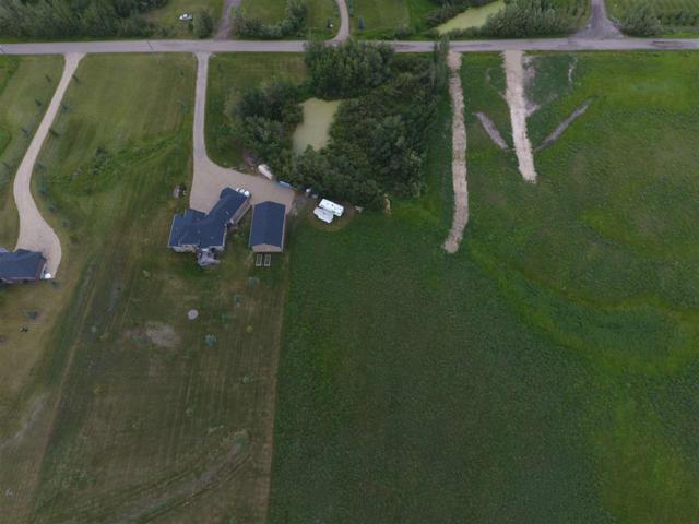 22111 Twp Rd 510, Rural Leduc County, AB T0B 3M2 (#E4118435) :: Initia Real Estate