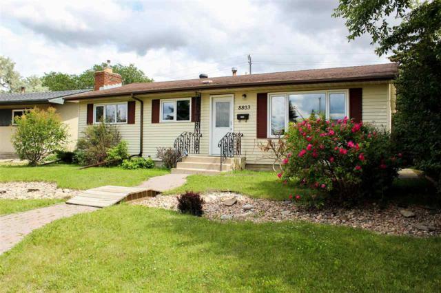 8803 52 Street, Edmonton, AB T6B 1E8 (#E4119370) :: The Foundry Real Estate Company