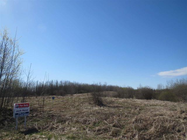 60 50106 Rg Rd 200, Rural Beaver County, AB T0B 4J2 (#E4120337) :: Initia Real Estate