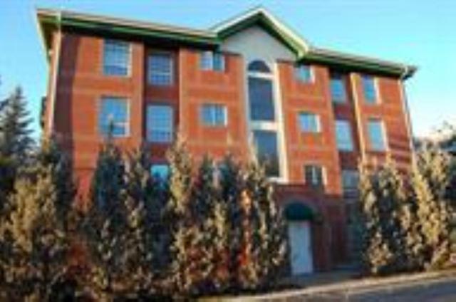 102 35 Sir Winston Churchill Avenue, St. Albert, AB T8N 0G3 (#E4122898) :: The Foundry Real Estate Company
