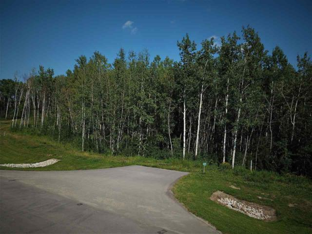Lot 27 53524 Range Road 275, Rural Parkland County, AB T7X 3V6 (#E4123282) :: The Foundry Real Estate Company