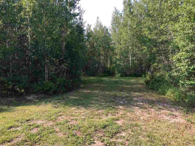 12 Village Creek Estates, Rural Wetaskiwin County, AB T0C 2V0 (#E4124008) :: The Foundry Real Estate Company