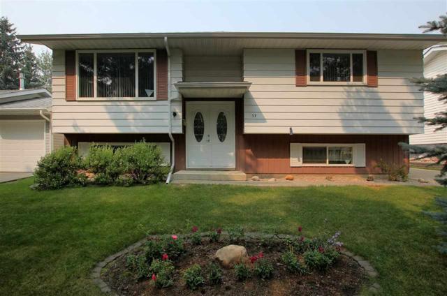 53 Goodridge Drive, St. Albert, AB T8N 2B1 (#E4125742) :: The Foundry Real Estate Company