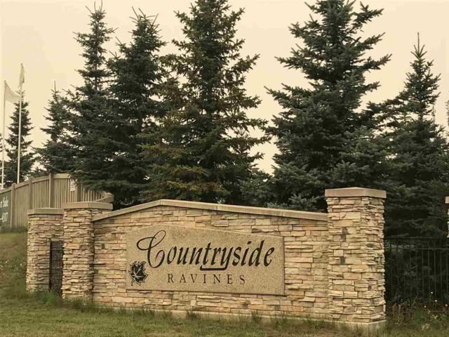 64, 26131 Twp Rd 532 A, Rural Parkland County, AB T7Y 1A1 (#E4125772) :: The Foundry Real Estate Company