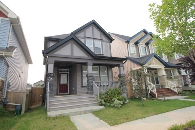 3738 Alexander Crescent, Edmonton, AB T6W 0W9 (#E4125844) :: The Foundry Real Estate Company
