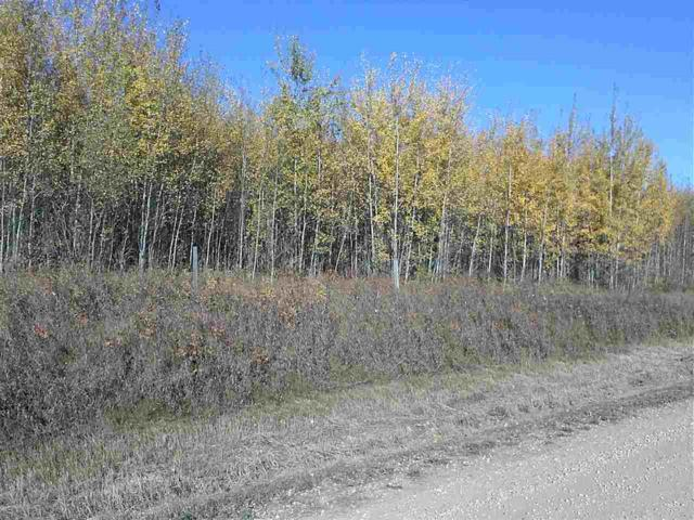 Twp 541 Range Rd 34, Rural Lac Ste. Anne County, AB T0E 0A0 (#E4125989) :: The Foundry Real Estate Company
