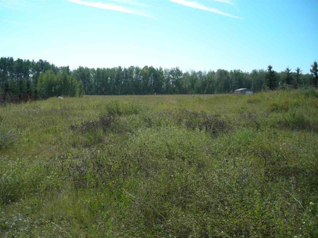 Lot 12 Highland Estates, Rural Wetaskiwin County, AB T0C 2V0 (#E4128028) :: The Foundry Real Estate Company