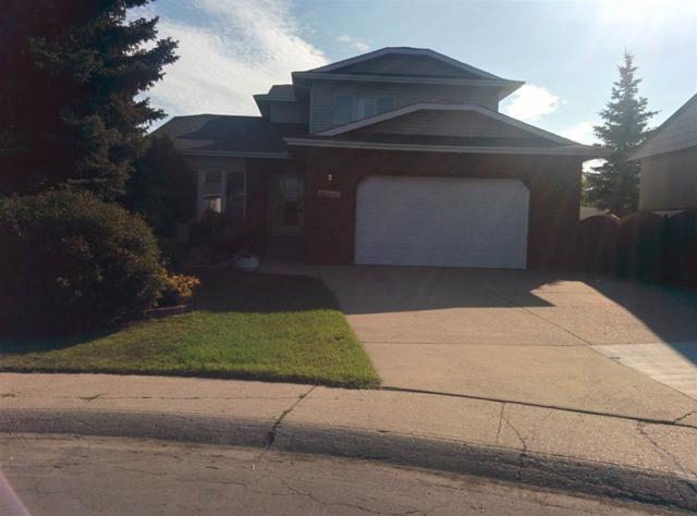 12225 40 Street NW, Edmonton, AB T5W 2L6 (#E4128408) :: Müve Team   RE/MAX Elite