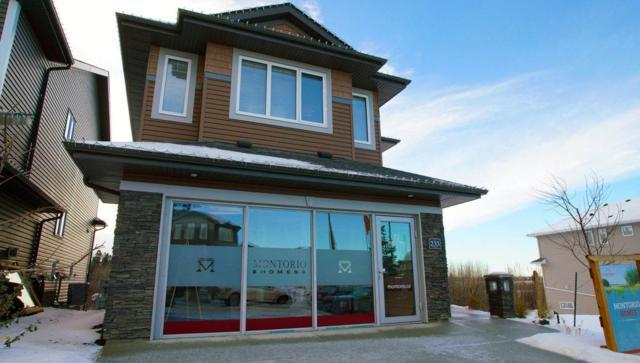 233 Hawks Ridge Boulevard, Edmonton, AB T5S 0M1 (#E4129158) :: The Foundry Real Estate Company
