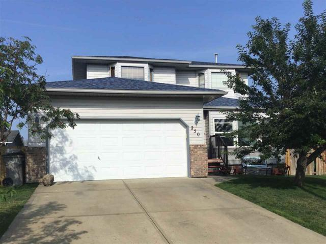 250 Porter Avenue, Millet, AB T0C 1Z0 (#E4129279) :: The Foundry Real Estate Company