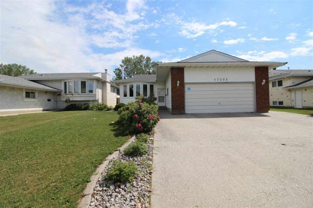 17203 98 Street, Edmonton, AB T5X 3Y2 (#E4129795) :: The Foundry Real Estate Company