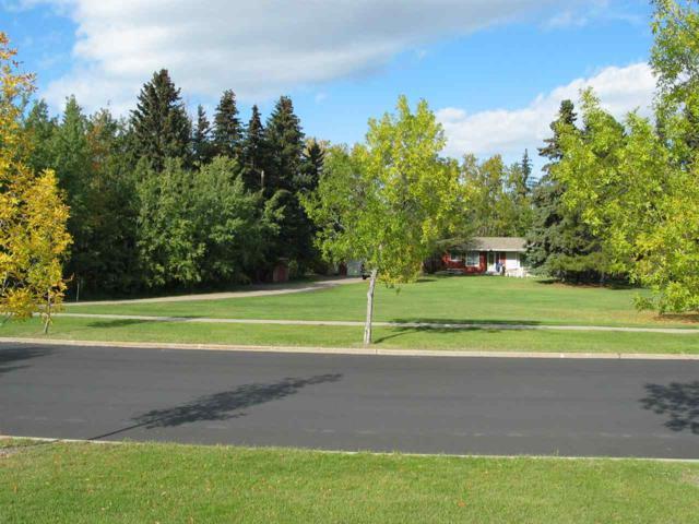 40 Blackburn Drive W, Edmonton, AB T6W 1A2 (#E4130495) :: The Foundry Real Estate Company
