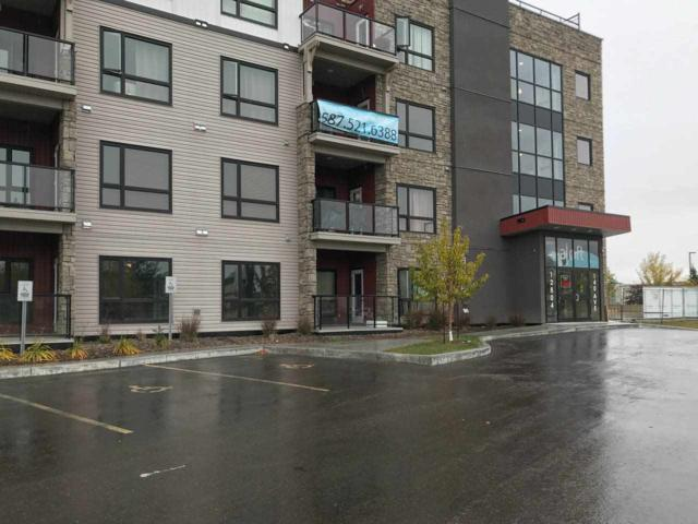 416 12804 140 Avenue, Edmonton, AB T6V 0M3 (#E4131167) :: The Foundry Real Estate Company