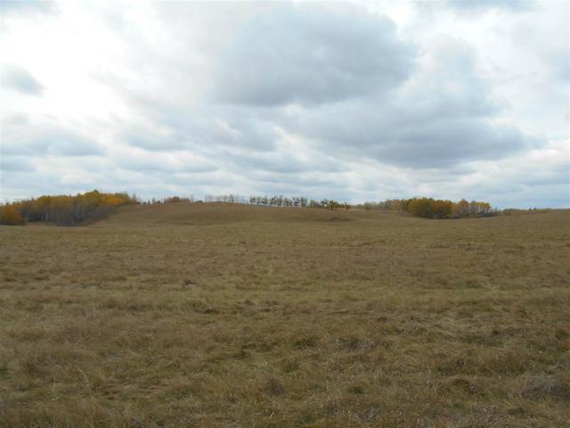 51120 Range Rd. 54, Rural Parkland County, AB T0E 2H0 (#E4131391) :: The Foundry Real Estate Company