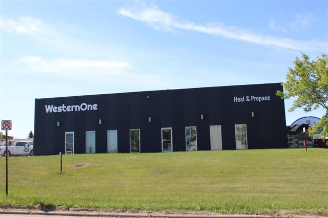 1415 78 AV NW, Edmonton, AB T6P 1L8 (#E4131772) :: The Foundry Real Estate Company