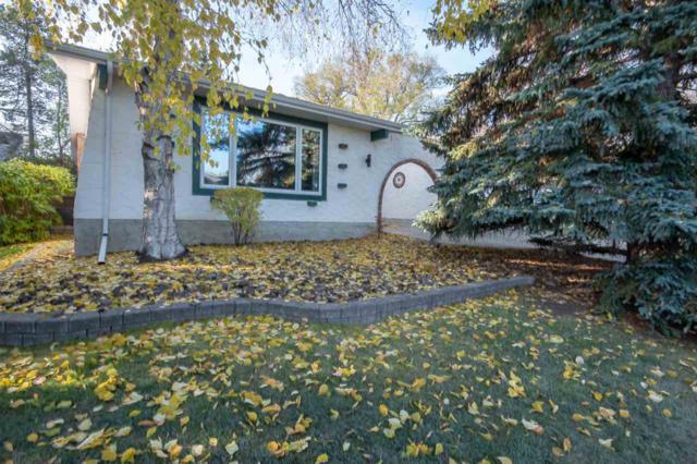 15111 54 Avenue, Edmonton, AB T6H 4Z1 (#E4132377) :: The Foundry Real Estate Company