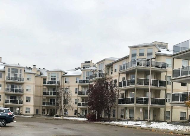 227 9730 174 Street, Edmonton, AB T5T 6J4 (#E4132404) :: The Foundry Real Estate Company