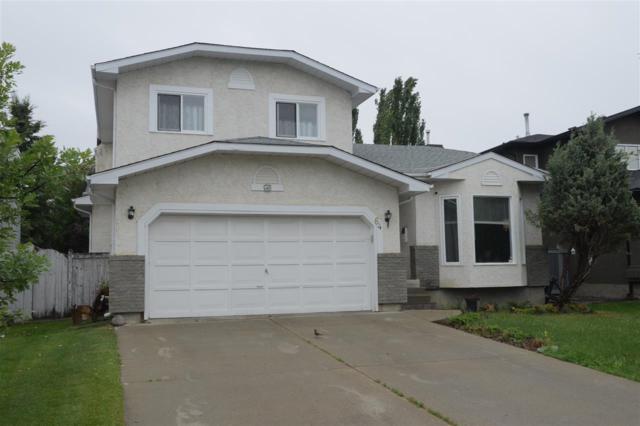 64 Ormsby Road, Edmonton, AB T5T 5V1 (#E4132608) :: The Foundry Real Estate Company