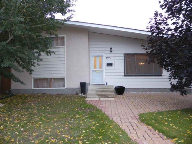8715 164A Street, Edmonton, AB T5R 2R2 (#E4132698) :: The Foundry Real Estate Company