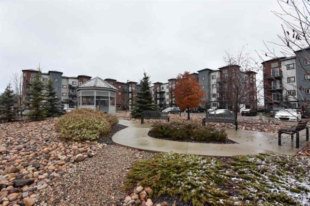 315 396 Silver_Berry Road, Edmonton, AB T6T 0H1 (#E4132703) :: The Foundry Real Estate Company