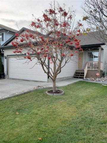 16028 95 Street, Edmonton, AB T5Z 3N2 (#E4132753) :: The Foundry Real Estate Company
